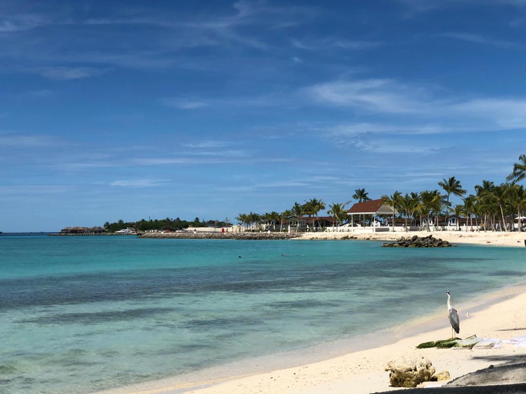 Maldive Islands, IOTA AS - 013.